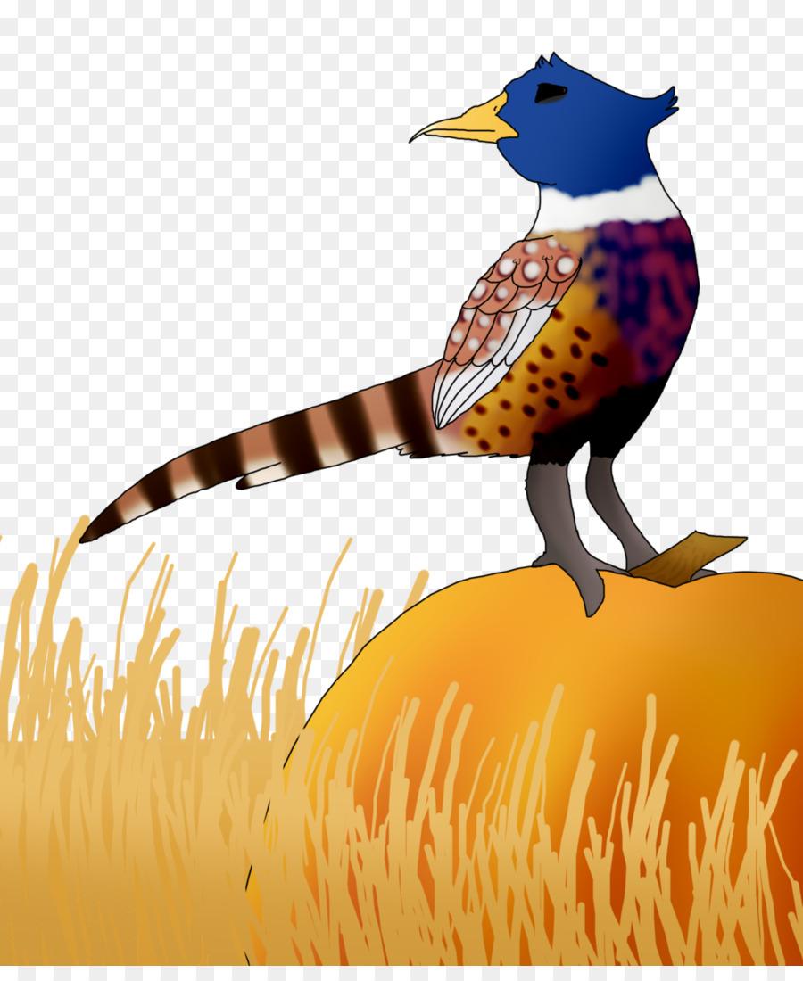 Kumpulan clipart transparan jpg download Paruh Galliformes Clip art - Pheasant png unduh - 1024*1232 ... jpg download