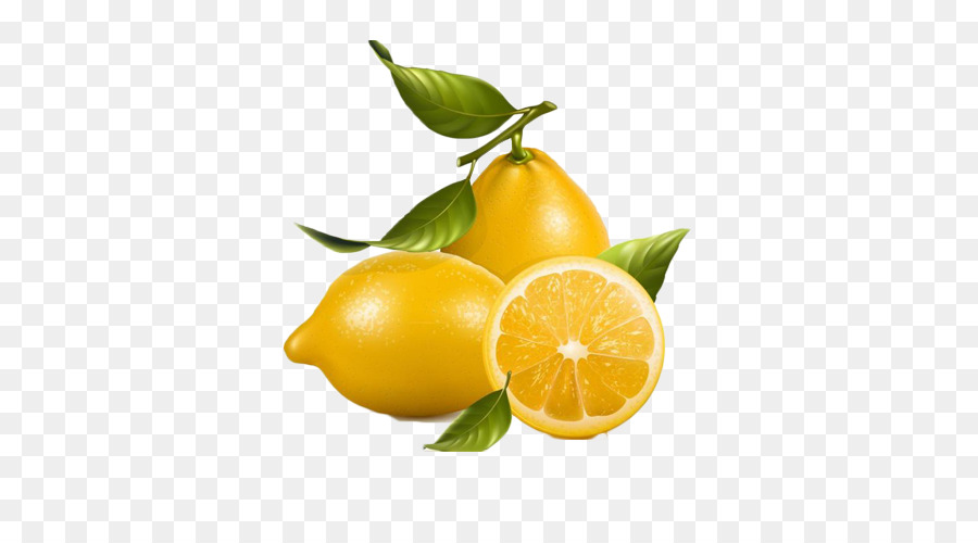 Kumquat clipart banner transparent library Lemonade Clipart png download - 500*500 - Free Transparent Lemon png ... banner transparent library