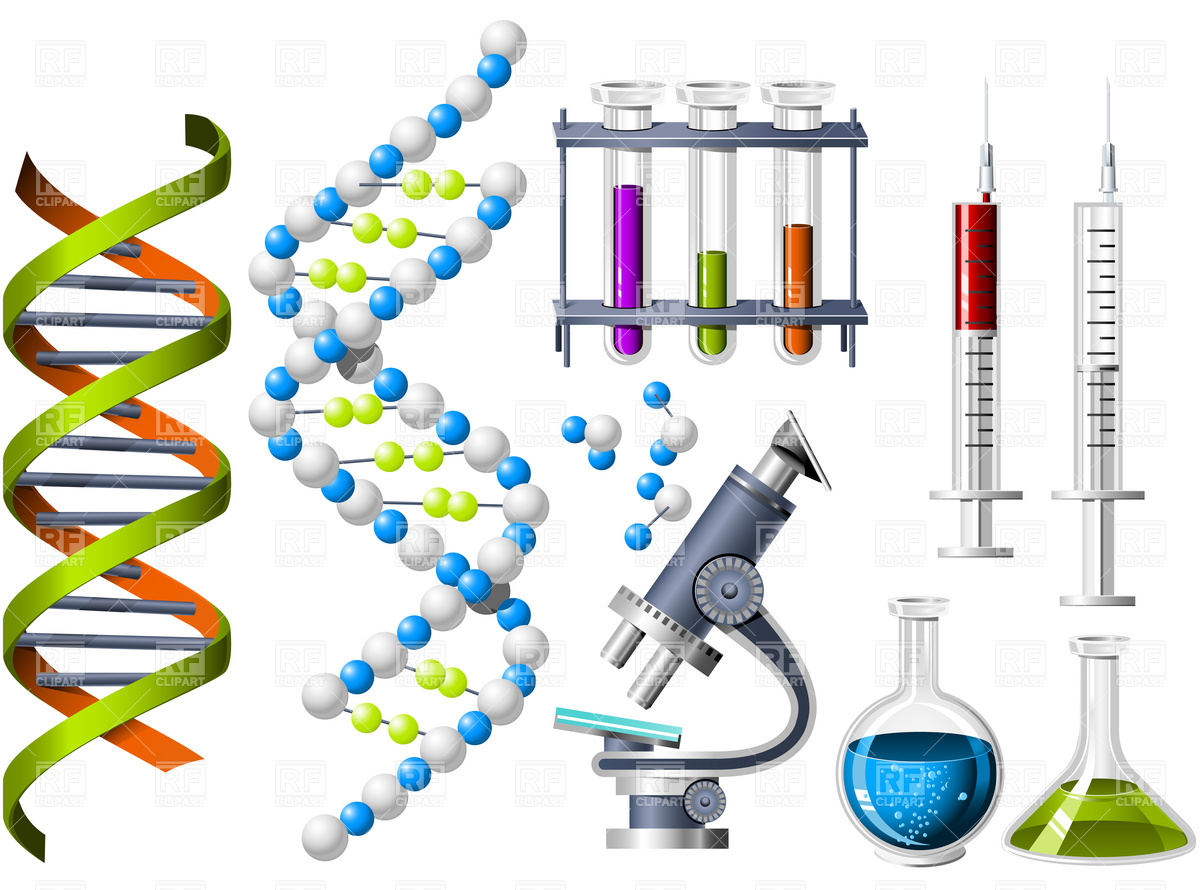 Lab equipment clipart free banner free stock Science Lab Equipment Clip Art free image banner free stock