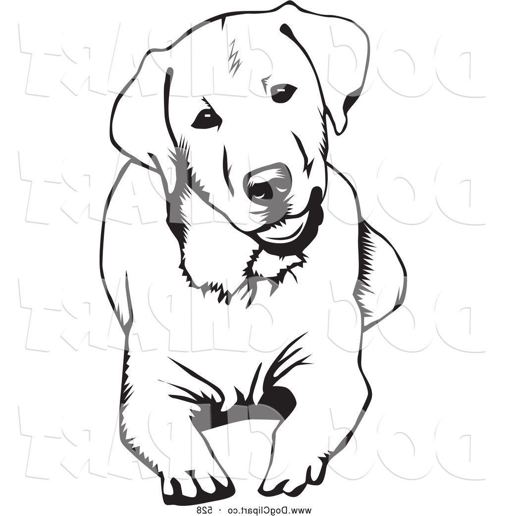 Labrador retriever clipart black white free transparent Collection of Labrador clipart | Free download best Labrador ... transparent