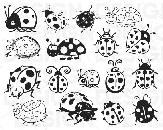 Lady bug clipart black and white siloueete jpg royalty free library ladybug svg, lady bug svg, beetle svg, ladybug clipart ... jpg royalty free library