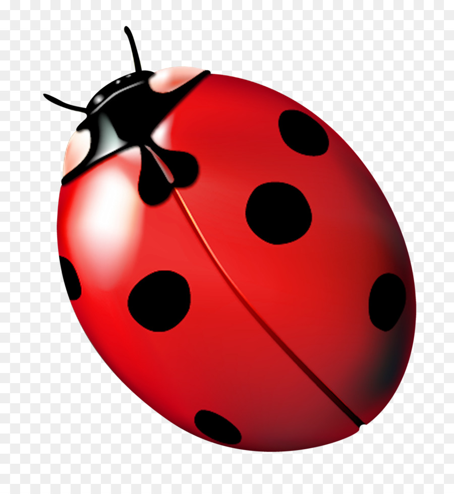 Ladybug flying clipart royalty free library Home Cartoon png download - 1000*1070 - Free Transparent ... royalty free library