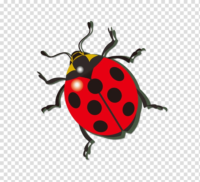 Ladybug icon clipart jpg transparent Ladybird Icon, ladybug transparent background PNG clipart ... jpg transparent