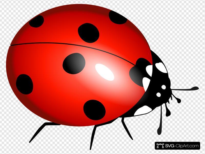 Ladybug icon clipart clip art free Ladybug Clip art, Icon and SVG - SVG Clipart clip art free