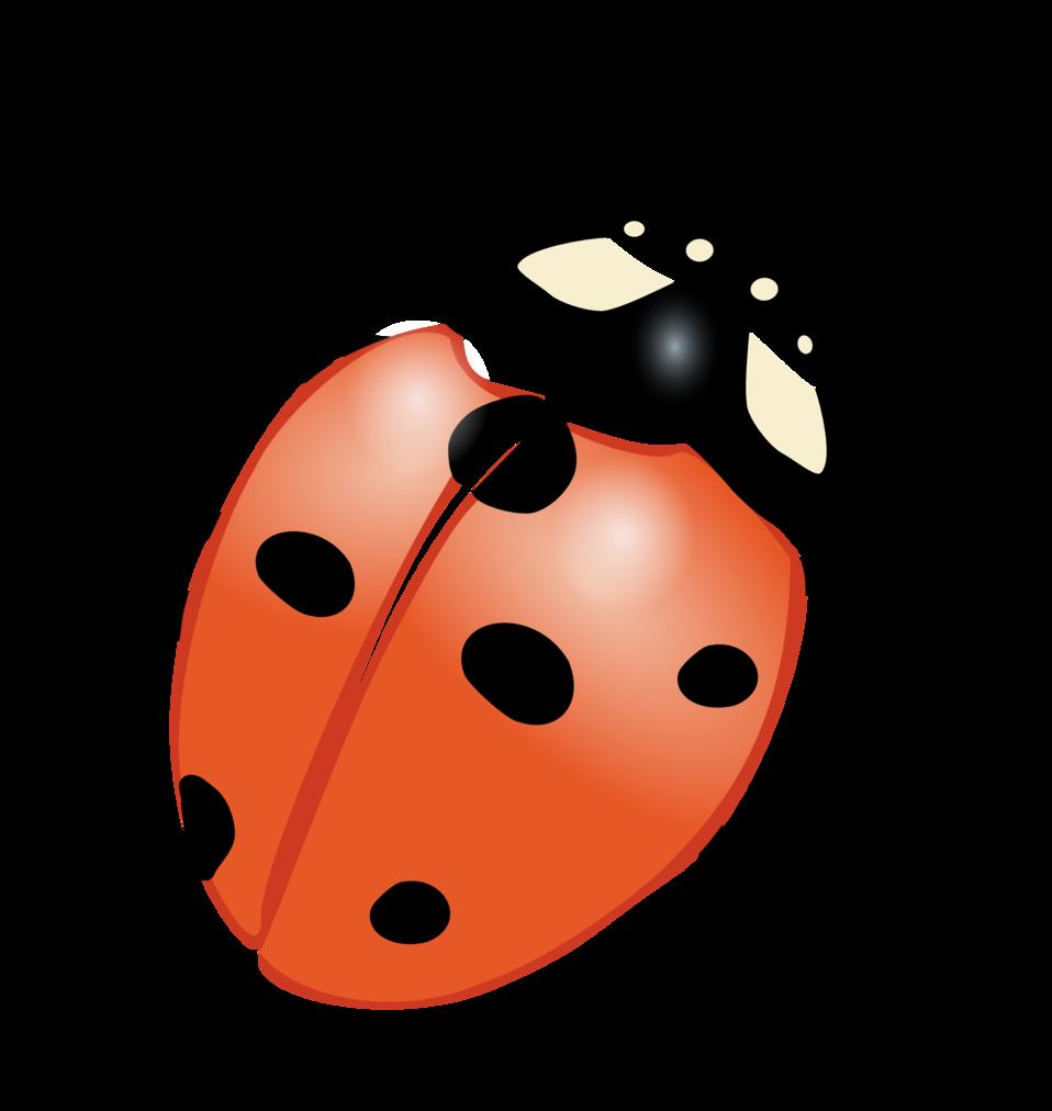 Ladybug on flower clipart png transparent stock Public Domain Clip Art Image   ladybug   ID: 13925578226950 ... png transparent stock