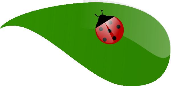 Ladybug on leaf clipart jpg freeuse download Lady Bug On Leaf Clip Art at Clker.com - vector clip art ... jpg freeuse download