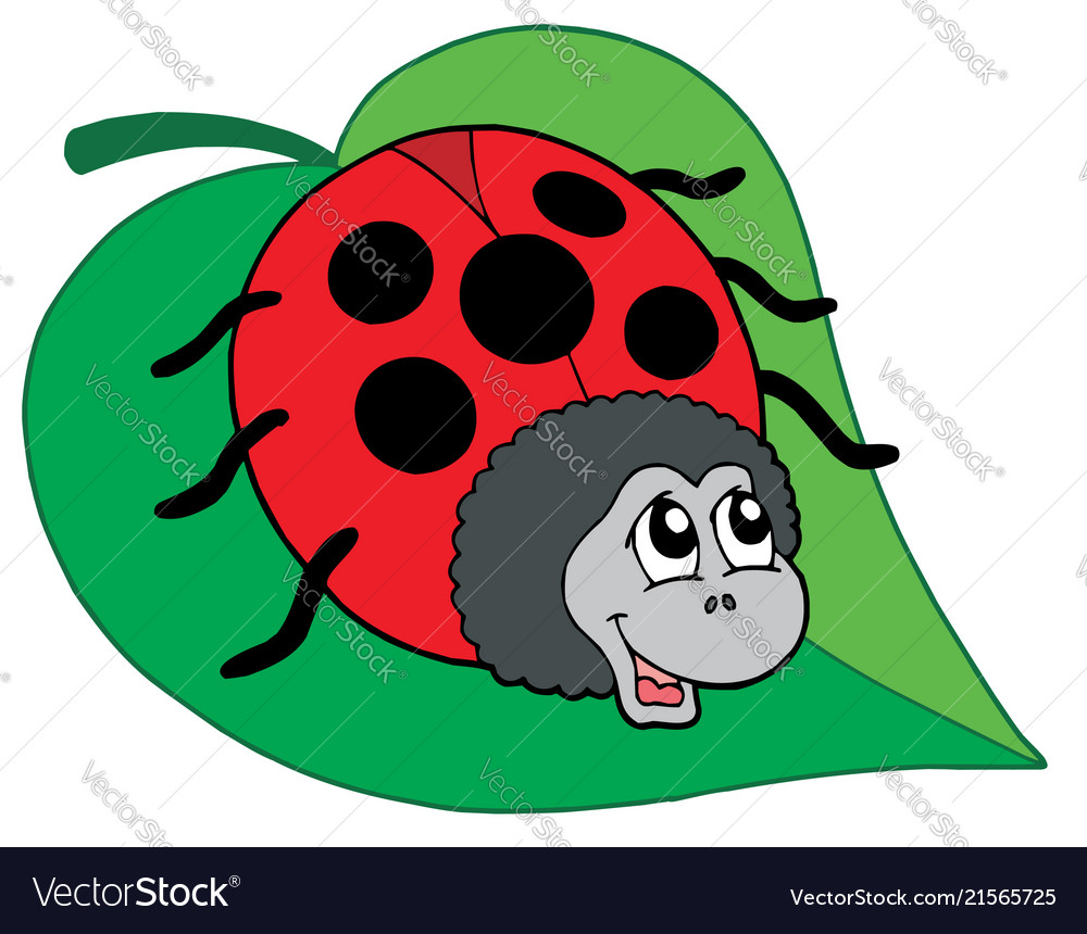 Ladybug on leaf clipart image transparent Cute ladybug on leaf image transparent