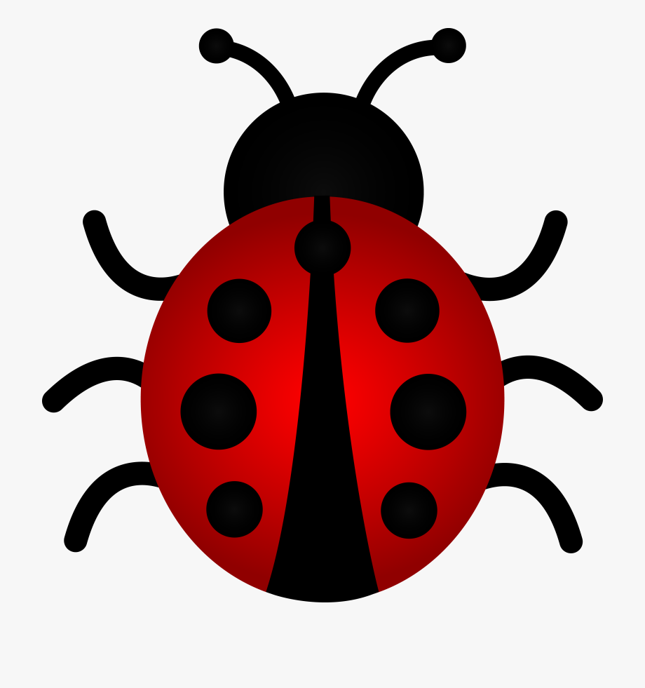 Ladybug pictures clipart clipart black and white download Free Ladybug Clipart - Ladybird Cartoon , Transparent ... clipart black and white download