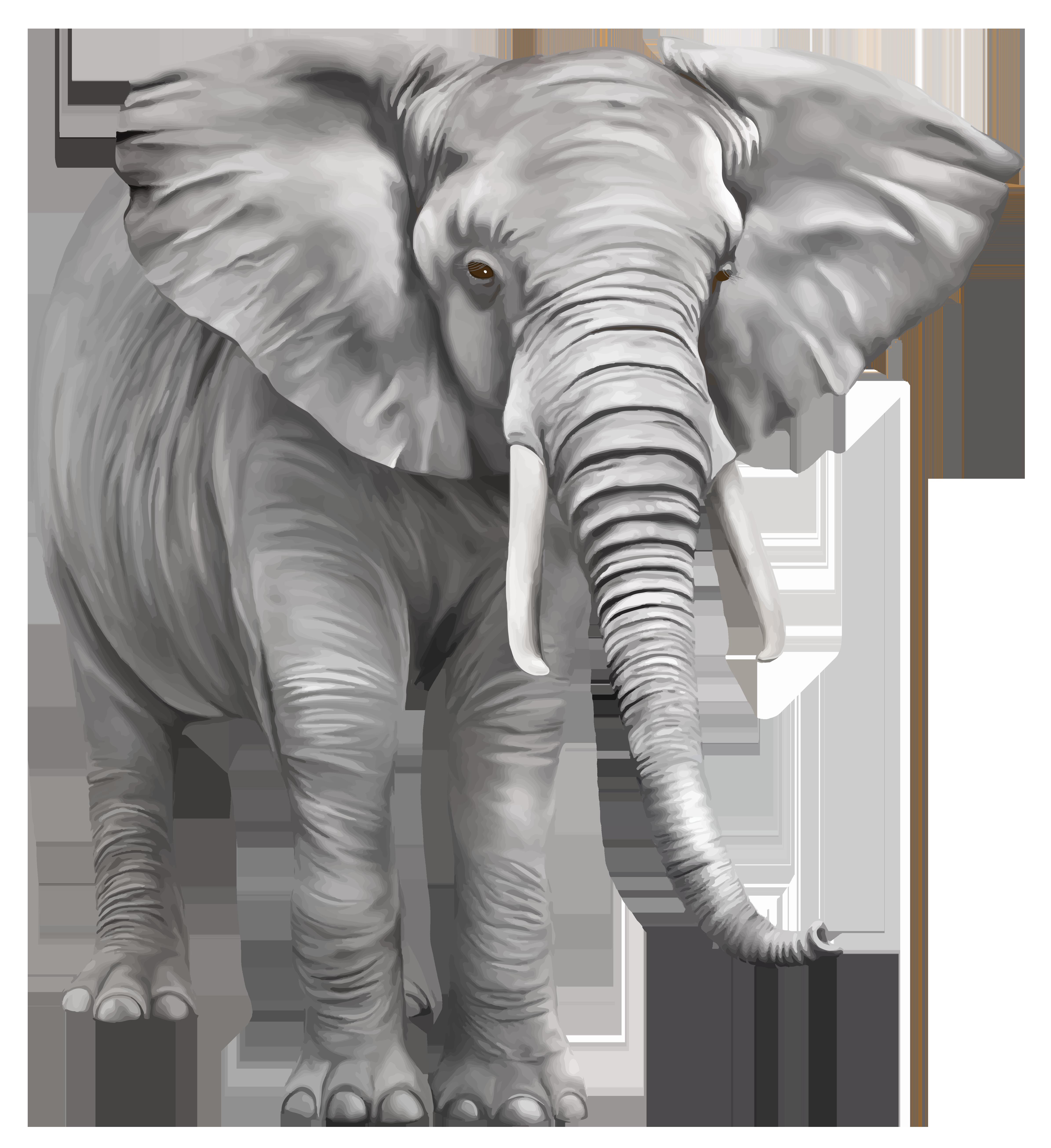 Large clipart images graphic transparent Elephant Large PNG Clipart - Best WEB Clipart graphic transparent