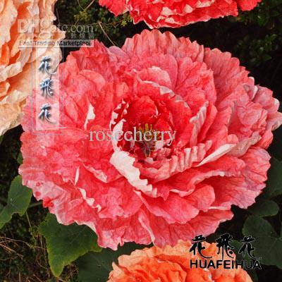 Large images of flowers clip art transparent Large images flowers - ClipartFest clip art transparent