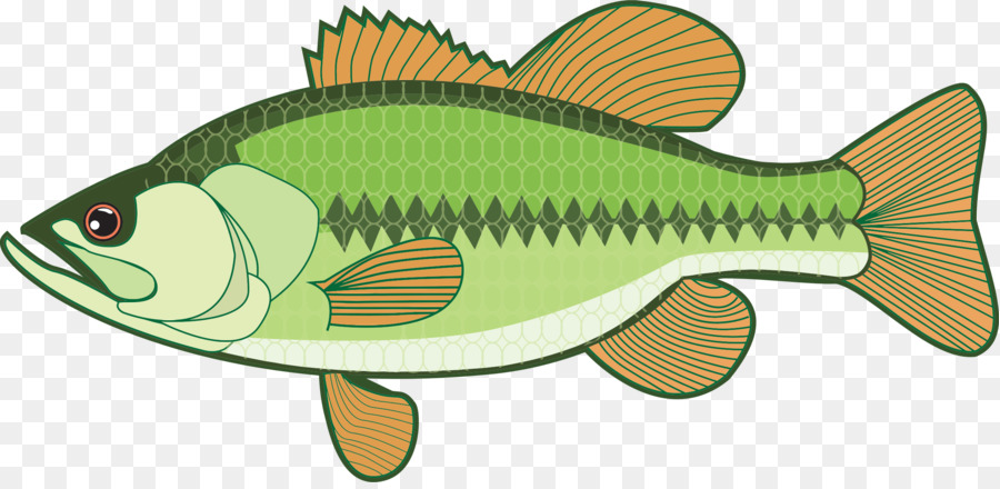 Large mouth bass clipart jpg transparent stock Fishing Cartoon clipart - Graphics, Drawing, Fish, transparent clip art jpg transparent stock