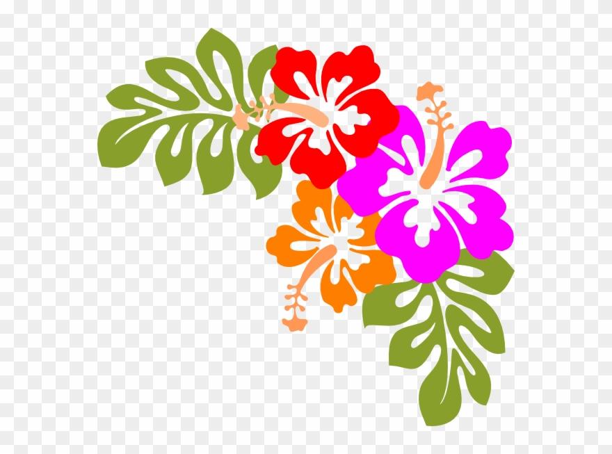 Laua clipart jpg royalty free Hawaii Luau Clipart - Hawaiian Flowers Transparent Background - Png ... jpg royalty free