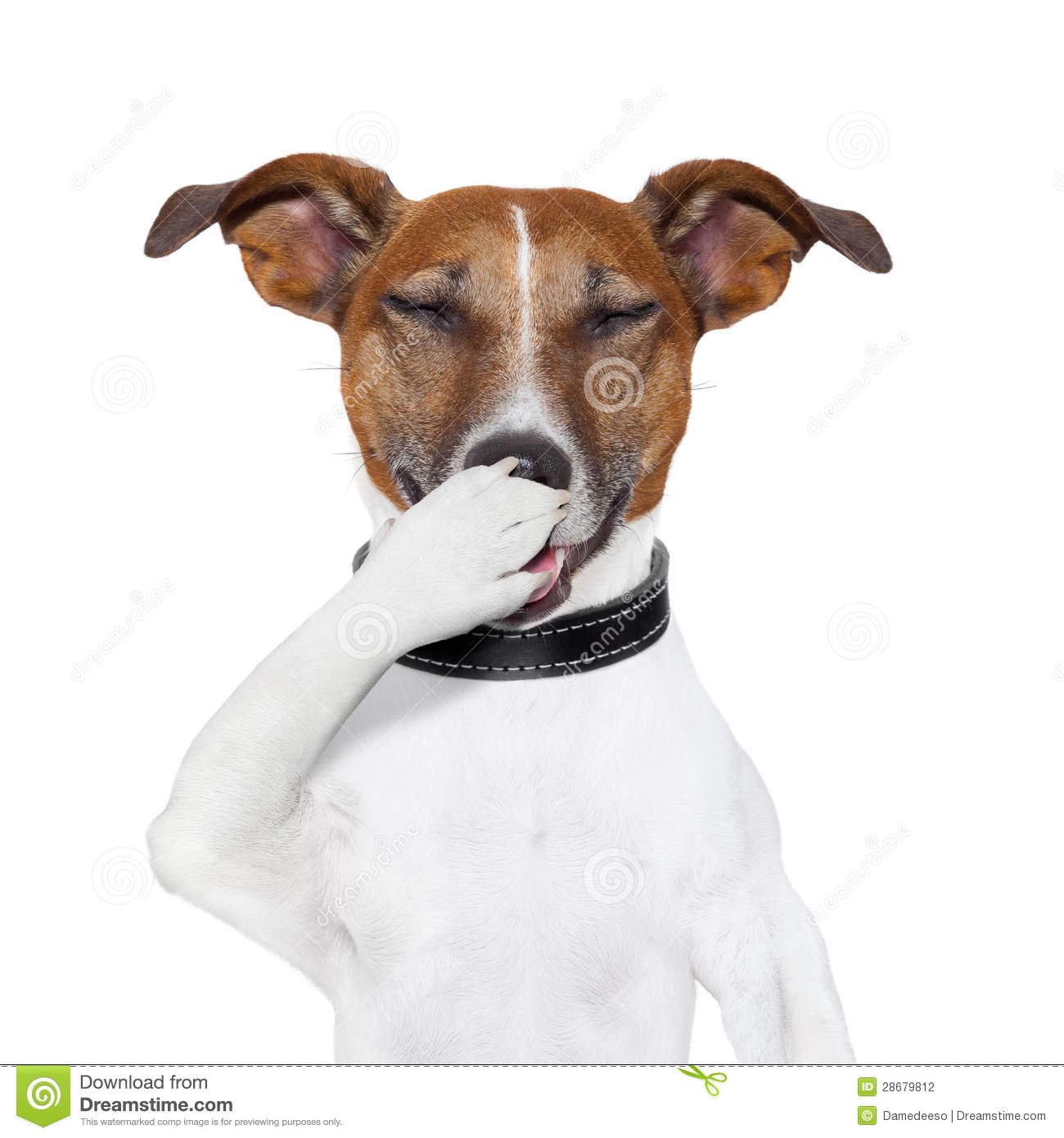 Laughing dog clipart jpg transparent library Dog Laughing At A Joke Stock Photography - Image: 28679812 jpg transparent library