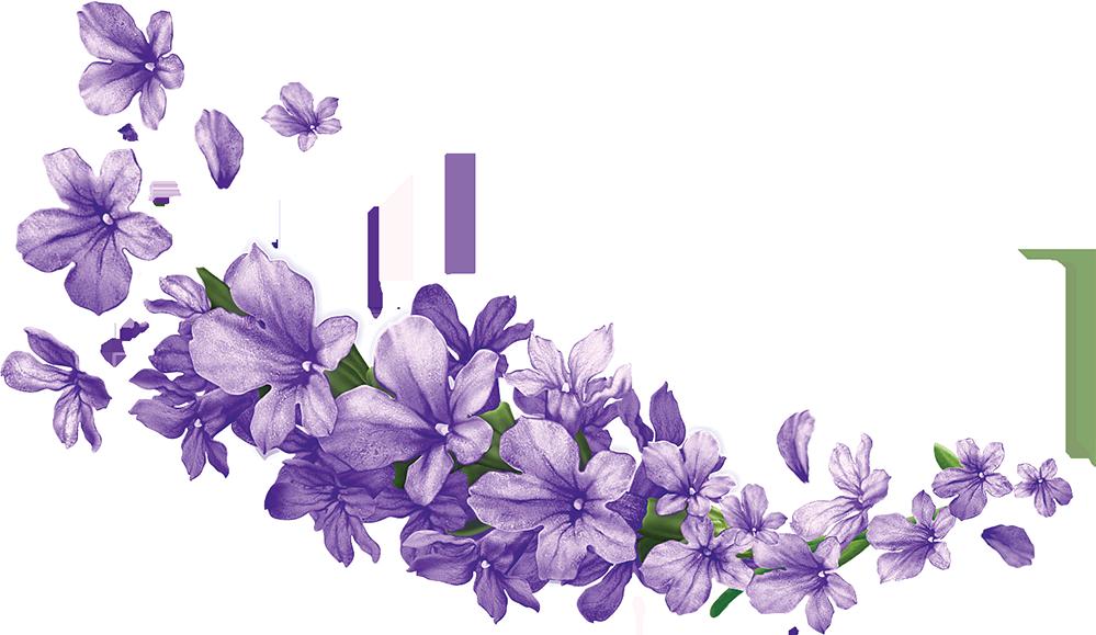 Lavendar flower clipart svg transparent download Pin by Parfenos on цветы | Pinterest | Lavender flowers, Clip art ... svg transparent download
