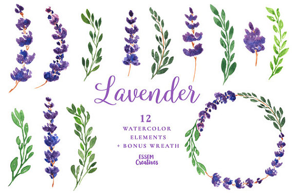 Lavender watercolor clipart graphic royalty free Lavender Watercolor Flowers Clipart, Purple Flower Wreath, DIY ... graphic royalty free