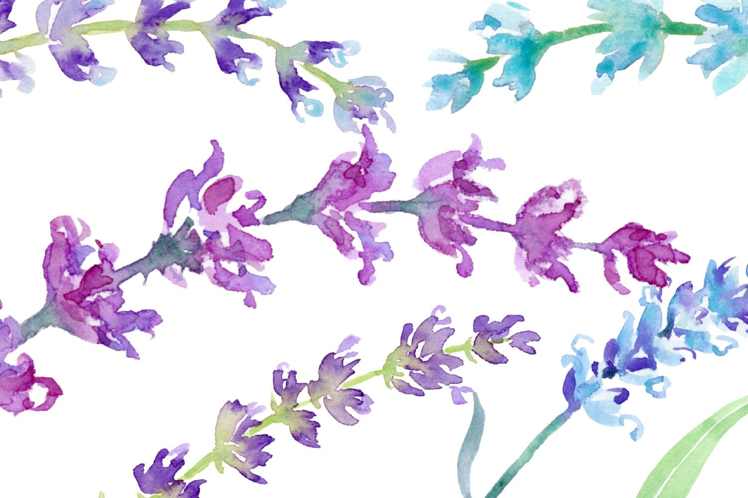 Lavender watercolor clipart png black and white Watercolor Clipart Lavender, sprig of lavender, lavender flowers, blue,  pink, purple herb for instant download scrapbook png black and white