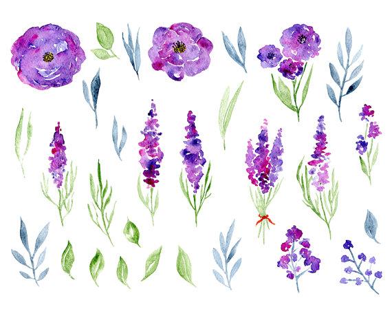 Lavender watercolor clipart picture black and white download Watercolor Floral Clipart 29 Purple Violet Flowers Aquarelle Digital ... picture black and white download