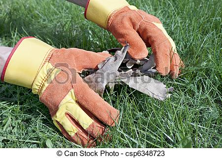 Lawn care stock clipart picture freeuse download Lawn care stock clipart - ClipartFest picture freeuse download