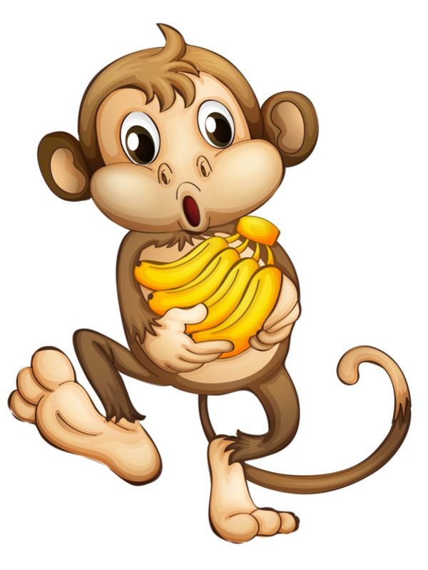 Le singe clipart freeuse download 17 Best images about Monkeys, Primates on Pinterest | Jungles ... freeuse download