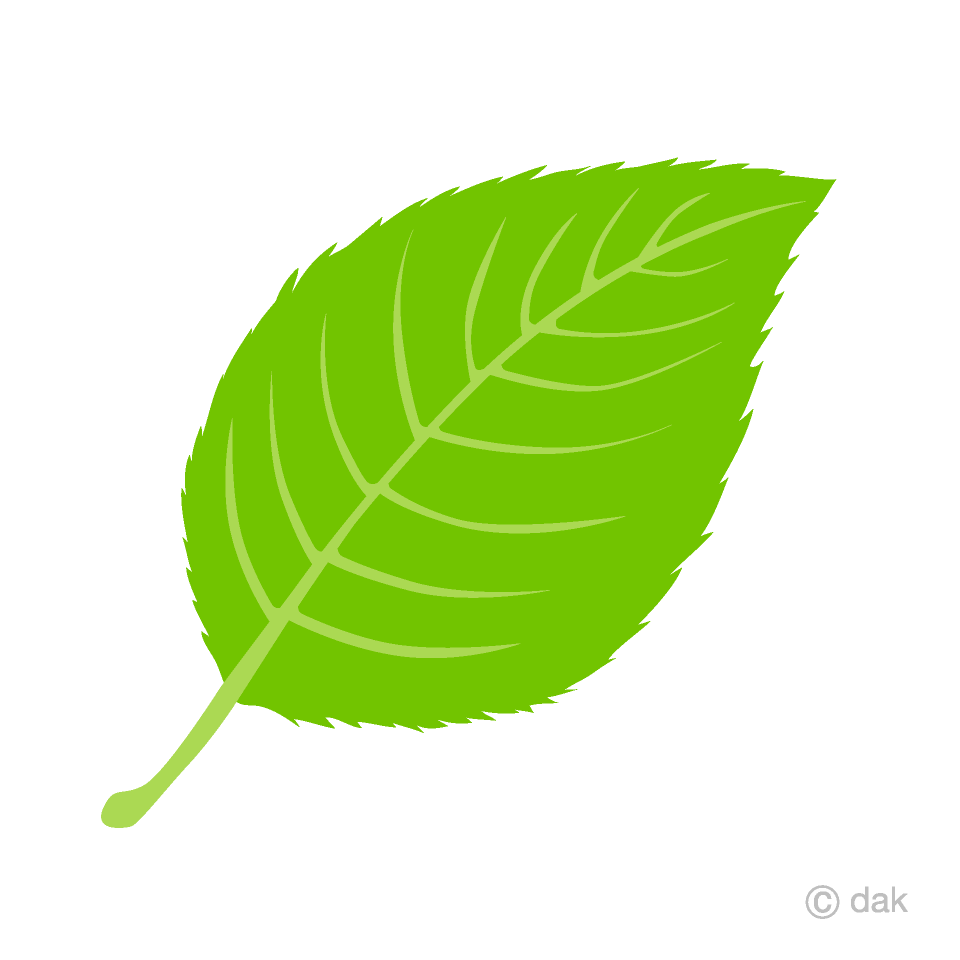 Leave clipart graphic free library Leaf Clipart Free Picture|Illustoon graphic free library
