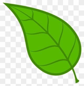 Leef clipart picture transparent Leaves Leaf Free Download Clip Art On Clipart Library - Green Leaves ... picture transparent