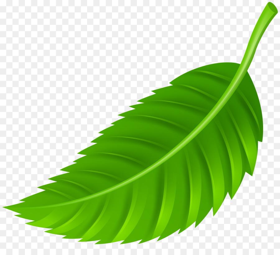 Leaf clipart color image transparent Banana Leaf Clipart clipart - Leaf, transparent clip art image transparent