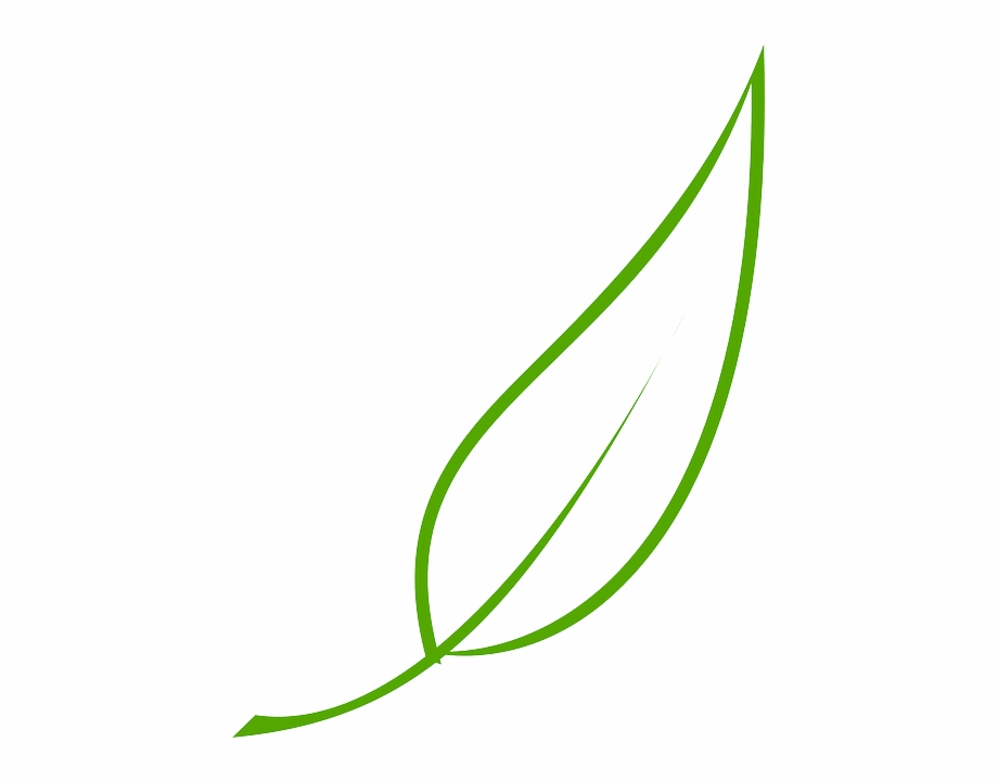 Leaf clipart color banner transparent download Green, Outline, Drawing, Leaf, Cartoon, Free, Color - Leaf Clipart ... banner transparent download