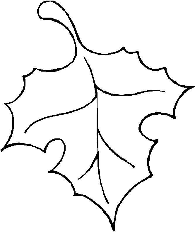 Leaf clipart outline different sizes clipart freeuse library Images Of Leaves | Free Download Clip Art | Free Clip Art | on ... clipart freeuse library