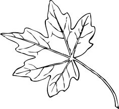 Leaf clipart outline differnt sizes svg royalty free library White Oak Leaf Outline   patterns   Pinterest   Oak leaves, White ... svg royalty free library