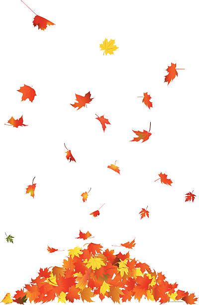 Leaf pile clipart png transparent download Leaf Pile Clipart (92+ images in Collection) Page 1 png transparent download