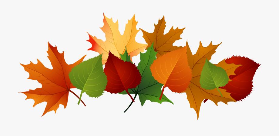 Leaf pile clipart clip art transparent library Autumn Leaves Pile Clip Art - Fall Leaves Transparent Background ... clip art transparent library