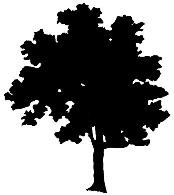 Leaf row silhouette clipart free download 17 Best ideas about Tree Silhouette on Pinterest | Tree silhouette ... free download