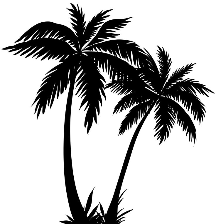 Leaf row silhouette clipart svg freeuse download 17 Best ideas about Palm Tree Silhouette on Pinterest | Palm tree ... svg freeuse download