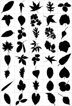 Leaf row silhouette clipart banner library bird branch silhouette, black and white graphic, vintage bird clip ... banner library