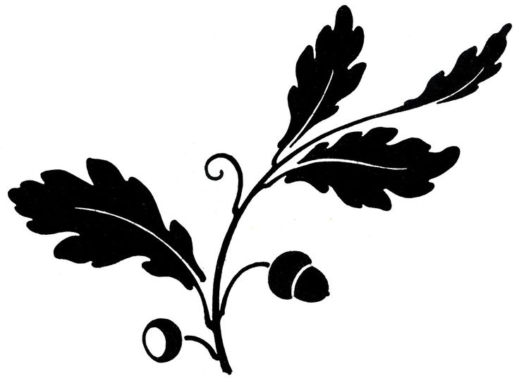 Leaf row silhouette clipart free stock Top 25 ideas about 1s Tree Silhouettes on Pinterest | Clip art ... free stock