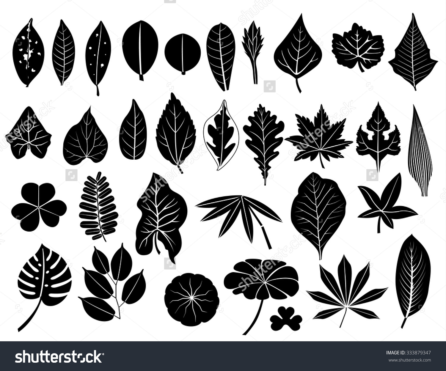 Leaf row silhouette clipart freeuse stock Silhouette Leaves Vector Set Grape Acacia Stock Vector 333879347 ... freeuse stock