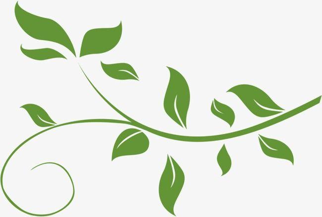 Leaf vine clipart jpg royalty free Fresh Green Leafy Vine Leaves, Vine Clipart, Fresh, Green Vine PNG ... jpg royalty free