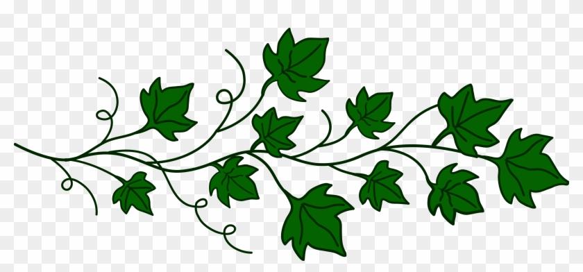 Leaf vine clipart png royalty free library Drawn Branch Leaf Border Png - Vine Clipart, Transparent Png ... png royalty free library