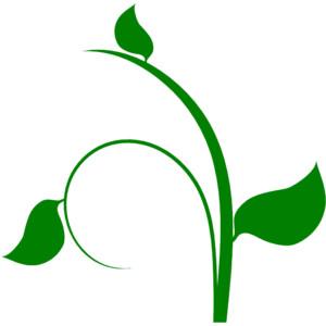 Leaf vine clipart svg transparent download Leaf vine clipart 3 » Clipart Station svg transparent download