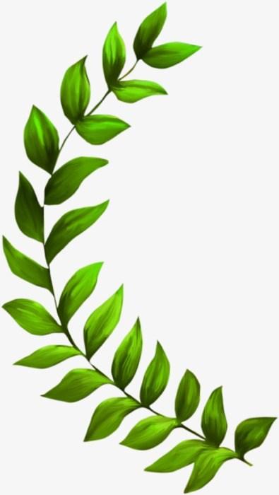 Leaf vine clipart jpg free Leaf vine clipart 5 » Clipart Portal jpg free
