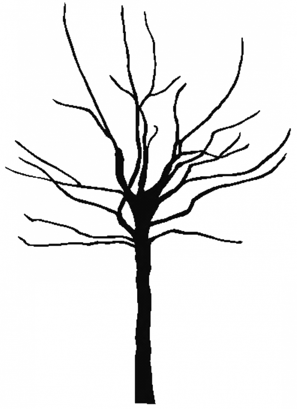 Olive tree clipart svg library stock Olive Tree Silhouette at GetDrawings.com | Free for personal use ... svg library stock