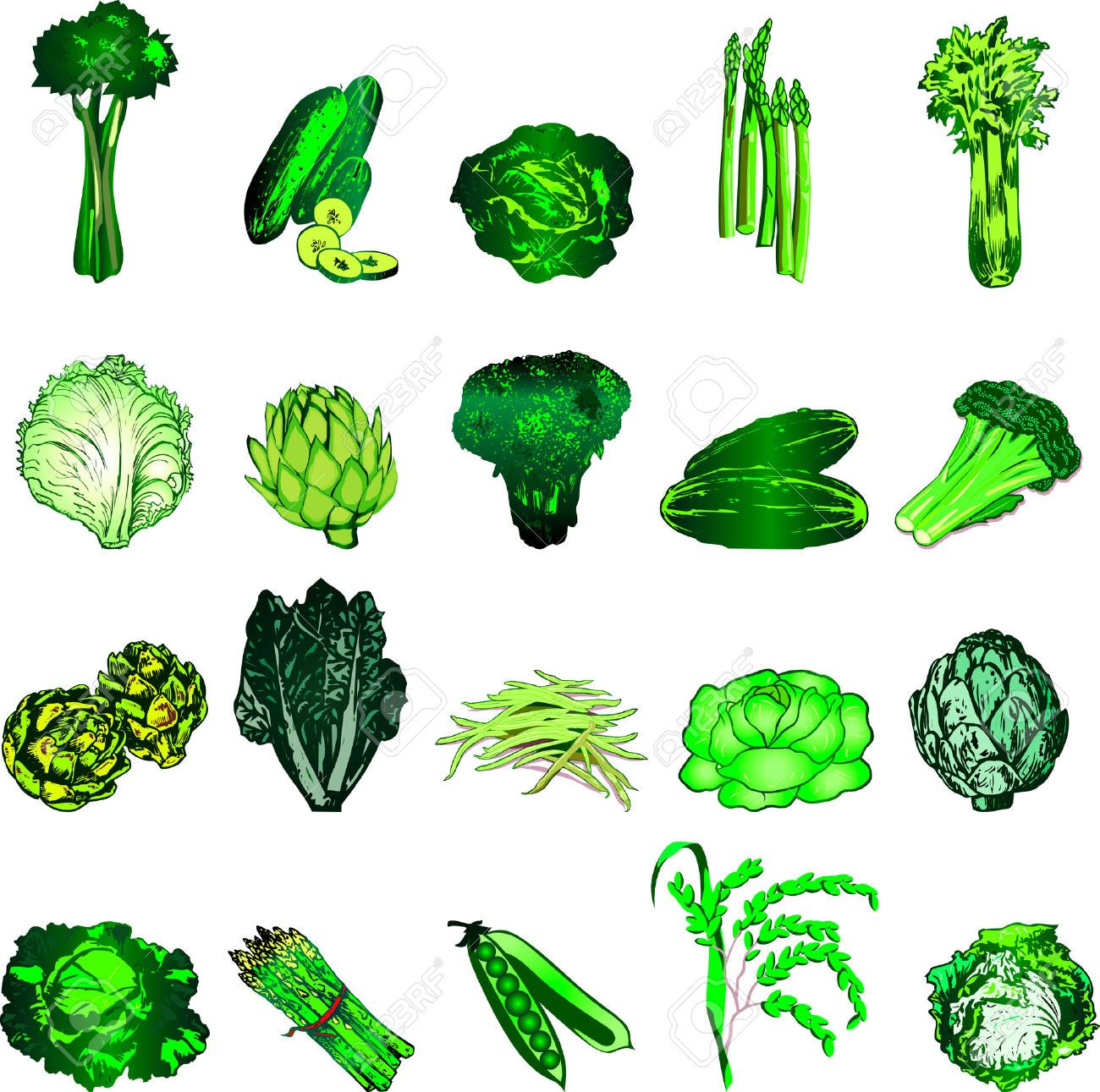 Leafy green clipart picture library Green leafy vegetables clipart 5 » Clipart Portal picture library