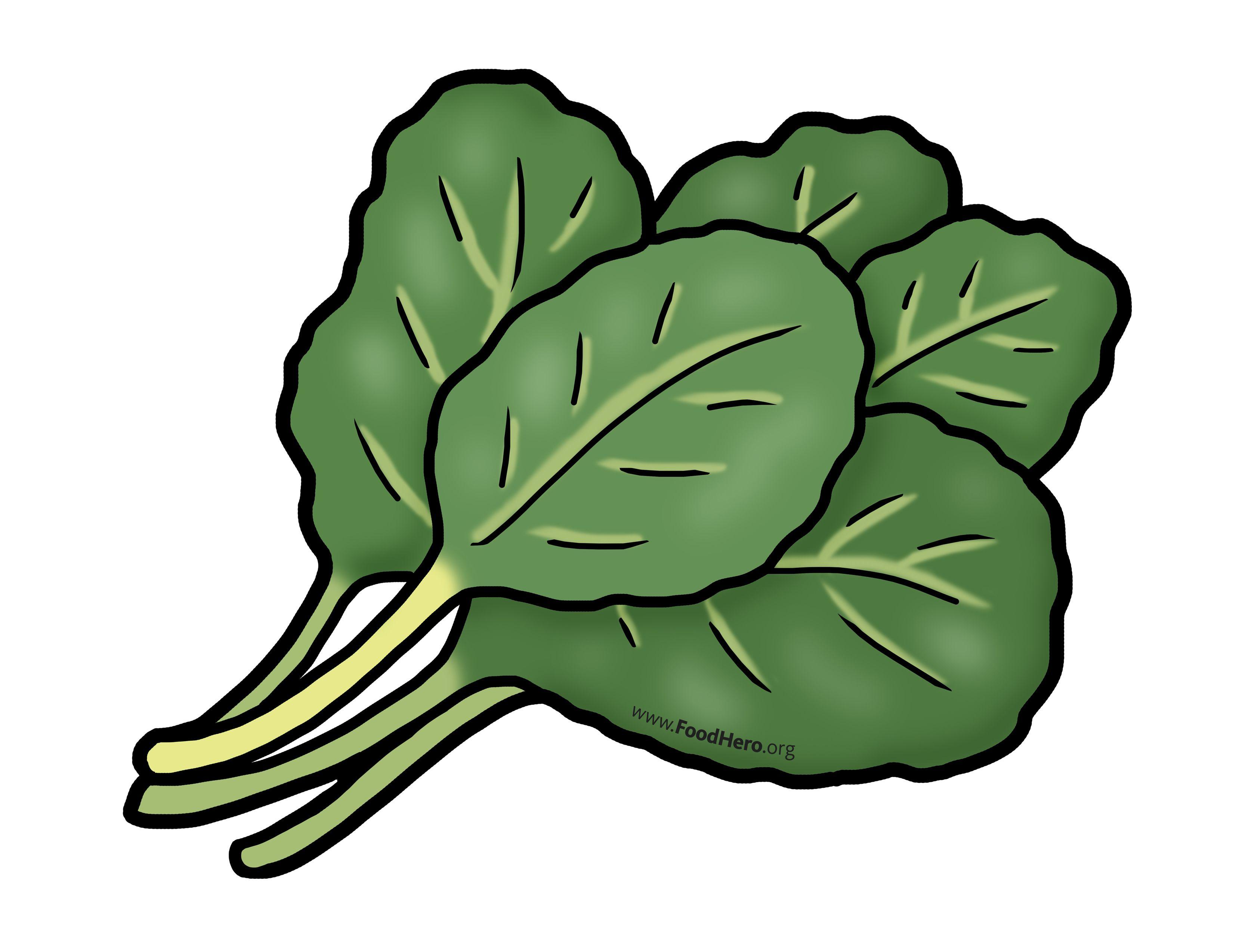 Leafy green clipart library Chollard greens illustration. Foodhero.org. #greens #bullentinboards ... library