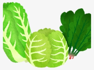 Leafy green clipart picture freeuse download Green Vegetables Png PNG Images | PNG Cliparts Free Download on SeekPNG picture freeuse download