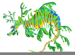 Leafy seadragon clipart banner freeuse stock Leafy Sea Dragon Clipart | Free Images at Clker.com - vector clip ... banner freeuse stock