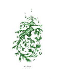 Leafy seadragon clipart banner transparent library 56 Best leafy sea Dragon images | Leafy sea dragon, Dragon art, Sea ... banner transparent library