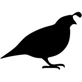 Leaning bird silhouette clipart black and white image library library Quail Silhouette: For some reason, the quail has always reminded me ... image library library
