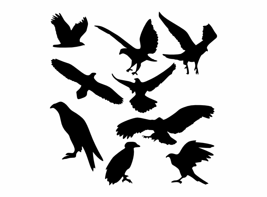 Leaning bird silhouette clipart black and white clip art download Bird Silhouettes Art - Clip Art Library clip art download