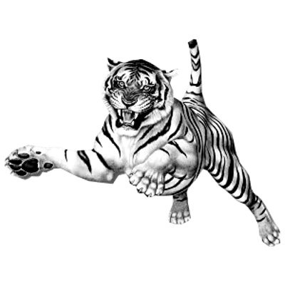 Tiger clipart leaping clip free download Jumping Tiger transparent PNG - StickPNG clip free download