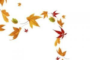 Leaves blowing clipart